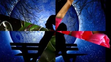 Нощ с хиляди звезди - Александра Лексер