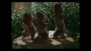 Alvin e os esquilos_everbody dance now
