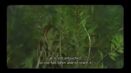 Вълшебното езеро-промо