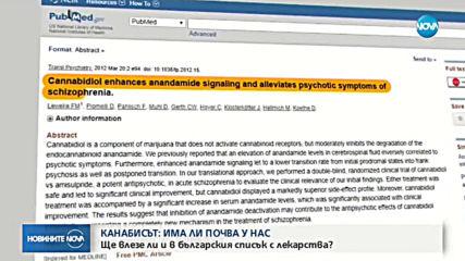 Ще влезе ли и канабисът в българския списък с лекарства?
