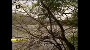 Труп на млада жена изплува от езерото в Панчерево