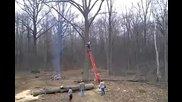 Отмъщението на дървото.•нелепо падане.намалете колонките,жена крещи!