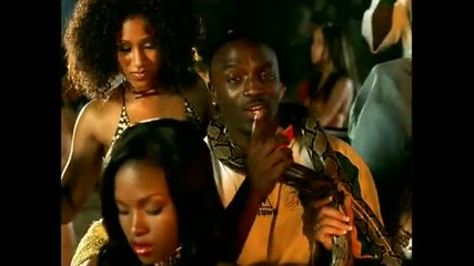 Akon - Trouble Nobody Bananza