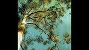 Heaven To Earth ~ Nicholas Gunn