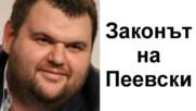 Каква е истинската цел на медийния закон на Пеевски?