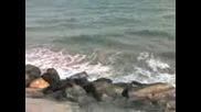 Моренце - Поморие 2007