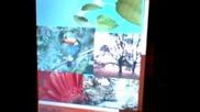 Vista flash beta 3 tested on K750i
