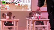Училище за маймуни отвори врати в Китай