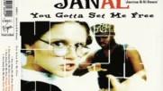 Janal--you Gotta Set Me Free-rap Version 1994