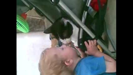 Глупаво дете и луда котка