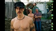 Red Hot Chili Peppers - The Adventures Of Rain Dance Maggie (new album)