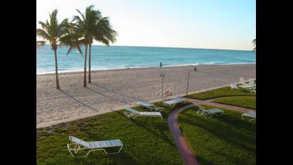 The Cool Kids - Miami Beach