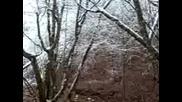 Lov v Starosel. Gonachi, vikachi i kalashnici