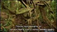 Ultimate Survival - Коста Рика - с превод [част2/2]