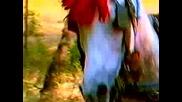 Румяна - Аман, аман (1997)