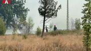 Montenegro: Firefighting ops tackle blaze on Gorica hill in Podgorica