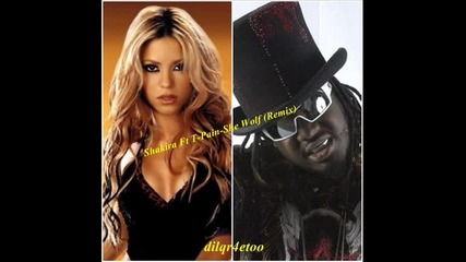 Shakira ft. T - Pain - She Wolf(remix)