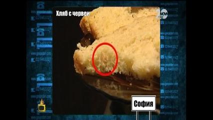 Хляб с червеи - Господари на ефира (12.09.2014)