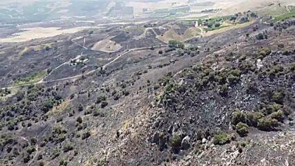 Italy: Wildfires bring devastation to farms near Palermo