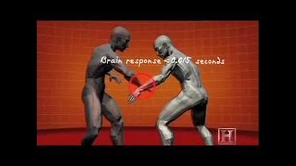 Самозащита - Krav Maga