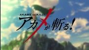 Akame Ga Kill! episode 9