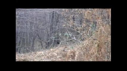 Глигански Пътеки - епизод 3