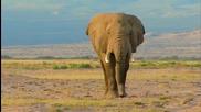 Красиви Пейзажи От Природата На Африка