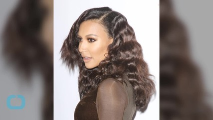 Naya Rivera and Her Baby Bump Spotted at the Airport