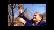 Райна и Иван Дяков - Майко,  една си на света