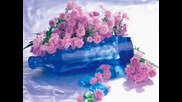 Ranga - The Blue Bottle (tabla Trail)