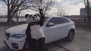 Gonzalez & Liunika - Panda ( Panda Video )