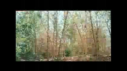 Jaanwar movie song