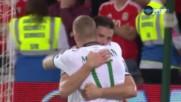 Уелс - Ирландия 0:1 /репортаж/