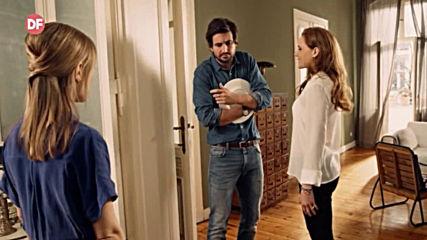 Романтични късни следобеди с филмите на DIEMA FAMILY