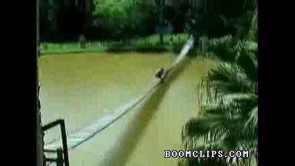 Пиян Мъж Се Опитва Да Прекоси Мост !