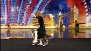 Кучето Чанди - Britains Got Talent