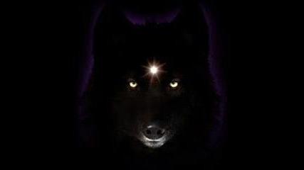 Вампири,върколаци и Вълци