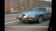 Елен блъснат от кола