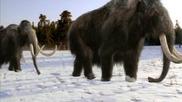 Bbc - Разходка с праисторическите зверове част 2/3 Епизод 6/6 High Quality