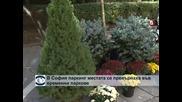 В София паркинг местата се превърнаха във временни паркове