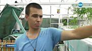 Как да произведем био храни с аквапоник система