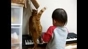 Коте и бебе 6