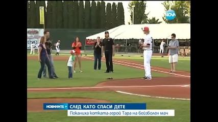 Поканиха котката-герой Тара на бейзболен мач - Новините на Нова