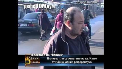РефеРОМдум
