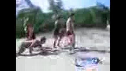 Гавра На Плажа На Приморско Перник 2