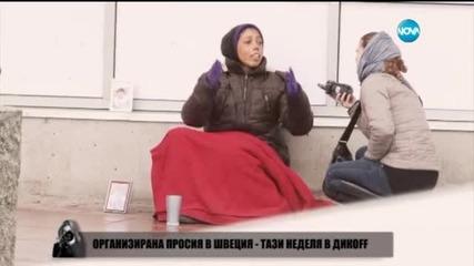 Миролюба Бенатова представя: Професия: Просяк