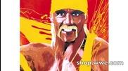 Goldust immortalized: Wwe Canvas 2 Canvas