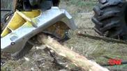 Изсичането на дърветата ще понамалее заради кризата