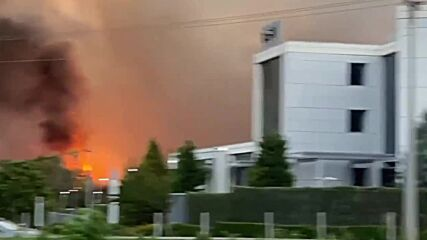 Greece: Massive forest fire forces hundreds to evacuate in Athens suburb