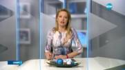 Спортни новини (31.12.2016 - обедна емисия)